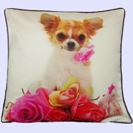 Cat and Roses on a cushion cover, couldn't get any more adorable than that. www.sophielam.co.uk