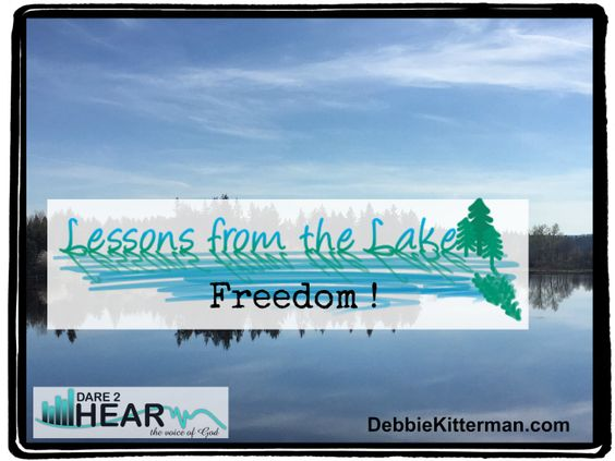 Freedom still seems to be very much on my mind, especially since yesterday was Independence Day. Hopefully you have had a chance to read last weeks post: Freedom on My Mind if not please go check…
