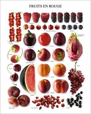 Red Fruit Atelier Nouvelles Images