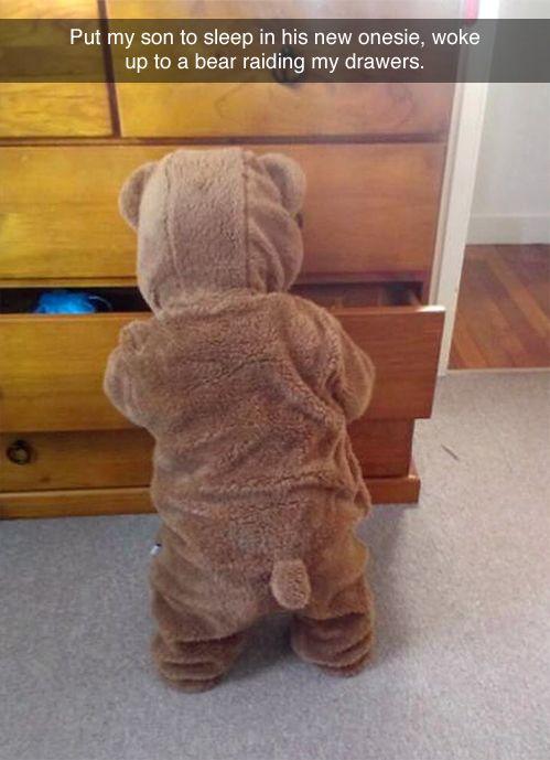 Bear raiding my drawers pin: