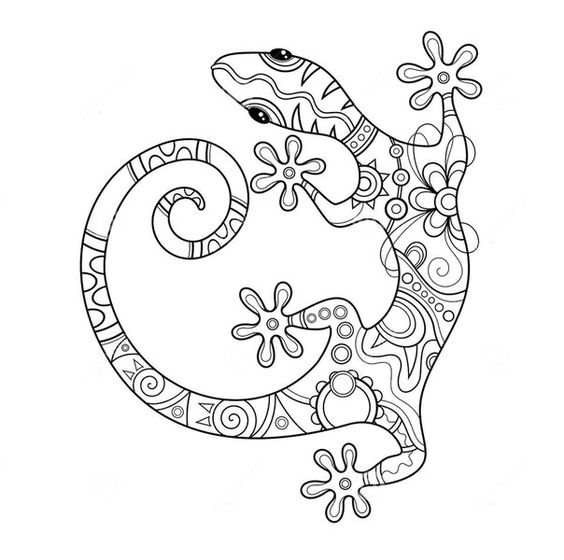Pin by rosalie on adult colouring dragons lizards for Gecko coloring pages