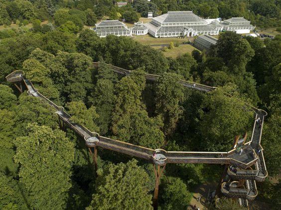 Treetop walkway, Kew Gardens: