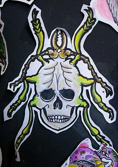 Cranio insected