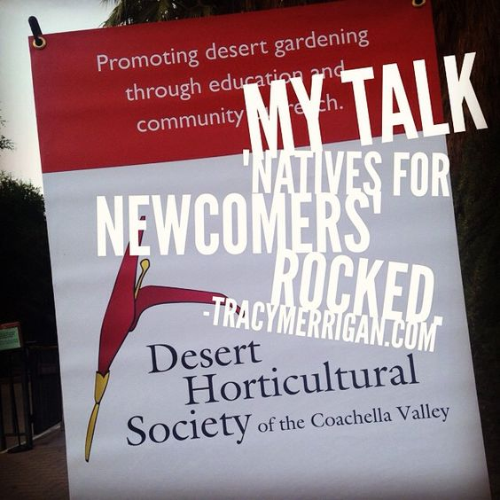 "I loved giving my talk at the #LivingDesert for Desert Community Garden Day ""Natives for Newcomers""! #dhscv #greenliving #GreenHomes #nativeplants #desertgardening #tracymerrigan Another great event for our community."