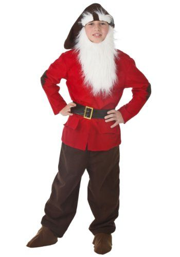 Child Dwarf (Large) Fun Costumes http://www.amazon.com/dp/B005MPJYB4/ref=cm_sw_r_pi_dp_91s.tb1D7R7HW