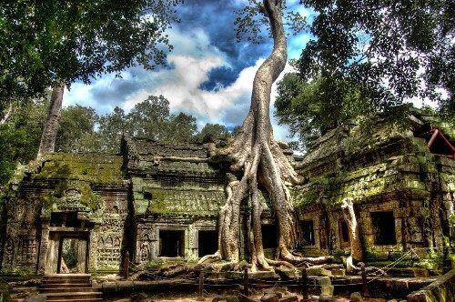 Một góc nhìn của ngôi đền Ta Prohm