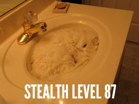 Total stealth.