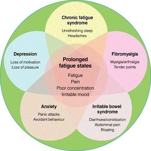 <p>Stress is a very broad term, and some things that put stress on our bodies and affect the adrenal glands and the HPA axis include blood sugar swings, digestive issues, food intolerances and sensitivities (like gluten), chronic infections, autoimmune diseases and inflammation. Overworked adrenal glands can lead to hypothyroid symptoms, even though the thyroid is perfectly fine, leading to thyroid hormone resistance (the hormones released become less and less effective), and excess ...