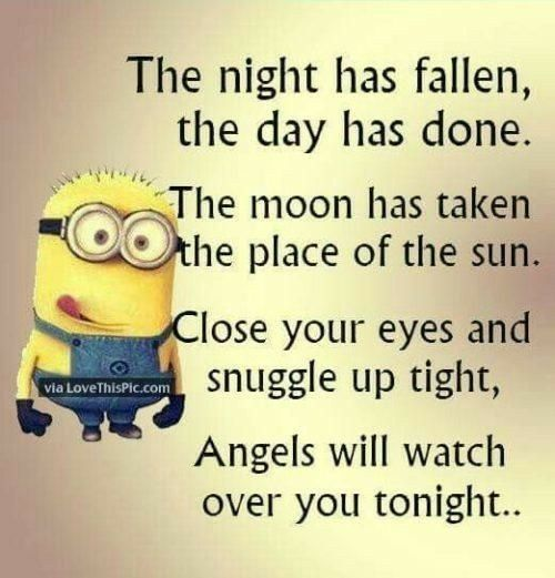 I find it really cute | Minions quotes, Funny quotes, Good ...