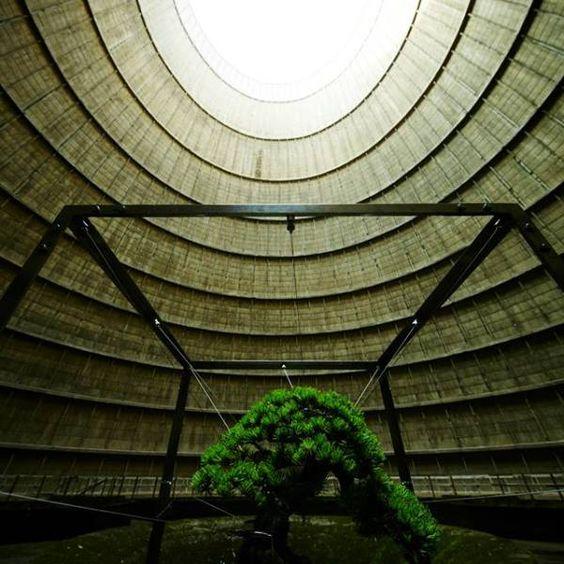 懸掛在廢棄發電廠裡的盆栽 - Azuma Makoto 東信