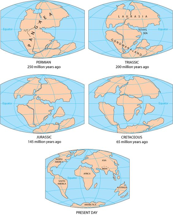Printables Before Pangea, Rodinia Worksheet Answers what is gondwana names africa and south america the breakup of pangaea supercontinent