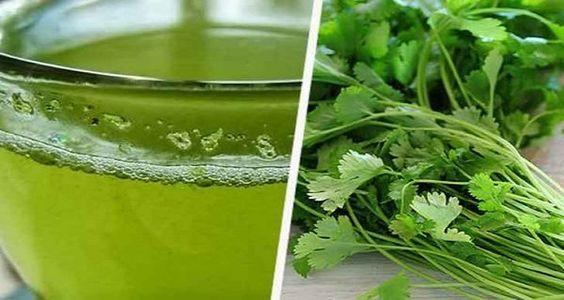 Image result for agua de perejil y cilantro