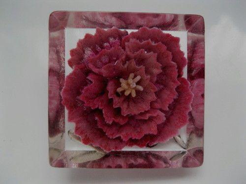 1940s Lucite Reverse Carved Pink Carnation Flower Brooch