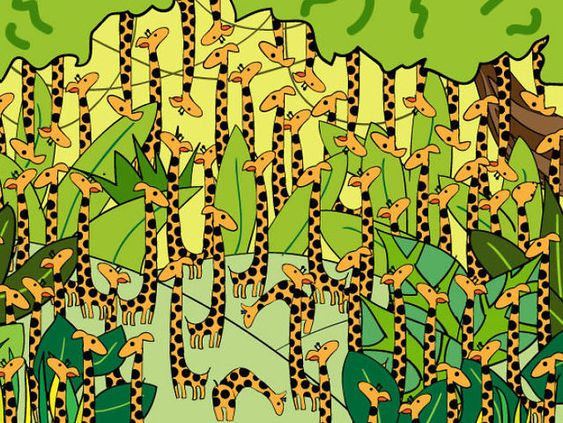 How Fast Can You Find The Snake Hidden In These Giraffes? | Playbuzz