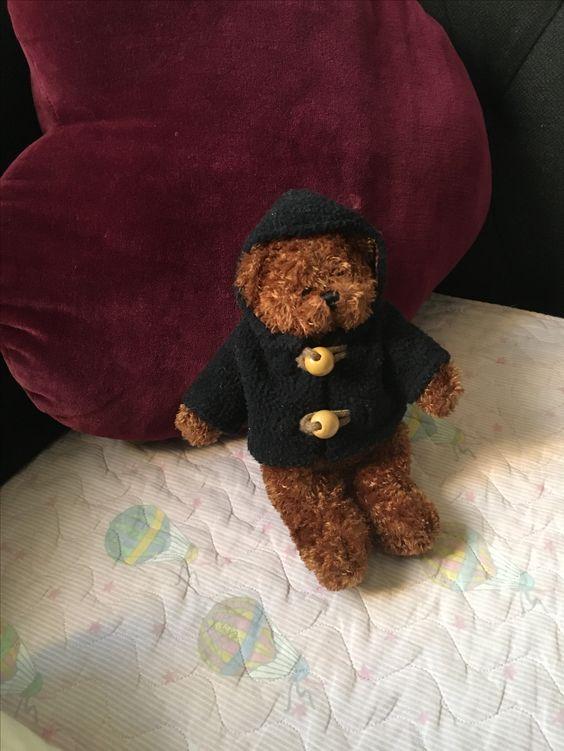 Teddy en mode hiver