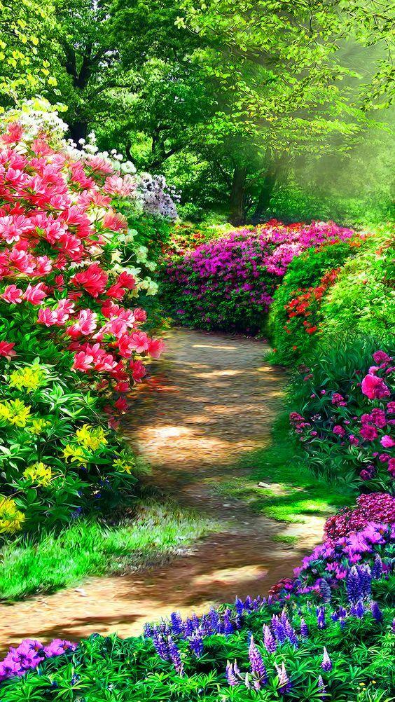 Primavera E Ritornata Beautiful Gardens Most Beautiful Gardens Beautiful Landscape Wallpaper Beautiful nature wallpaper yoga