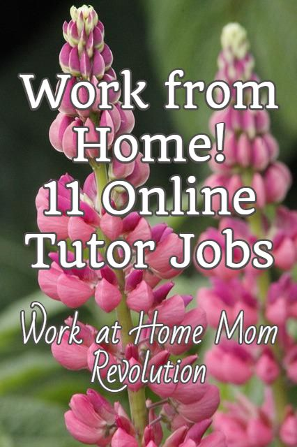 Work from Home!  11 Online Tutor Jobs / Work at Home Mom Revolution