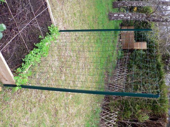 Tuto treillis pour potager en carr garden pinterest - Tuteur petit pois ...
