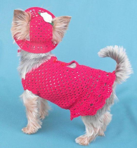 Handmade crochet dog dress Hat for dog Pet clothes XS size Dog hat & dress set Clothes pet red dress