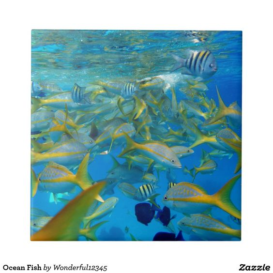 Ocean Fish Ceramic Tile