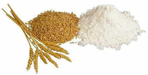 Bột mì giúp làm đẹp da và trắng sáng da