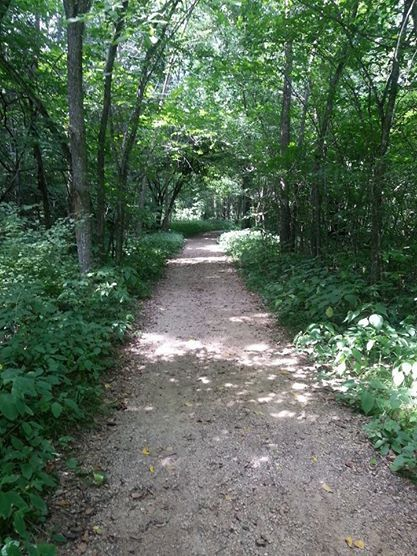 Hiking: Good for the Mind, Body, and Soul https://healthyfitgreen.wordpress.com/2014/08/18/hiking-good-for-the-mind-body-and-soul/