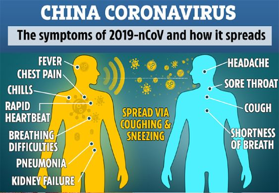 Know, What is Corona virus that spreading in china?