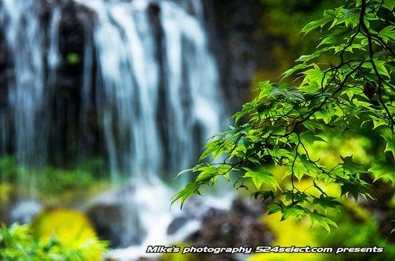吐竜の滝 http://524select.com/archives/4427