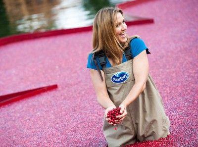 Cranberrysap: lekker, verfrissend en goed voor het hart