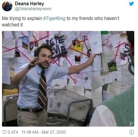 Justice For Carole Baskin The Inherent Sexism In Tiger King Femestella In 2020 Marvel Memes Memes Funny Memes