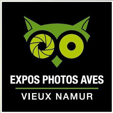 «Rendez-vous du 24 au 27 septembre au Vieux Namur pour les Expos Photos Aves #aves #natagora #nature»