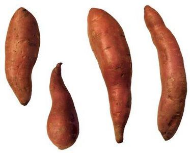 How to Make Mashed Cinnamon Sweet Potatoes