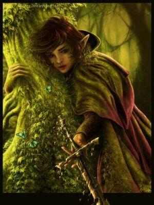 #elfe#bois