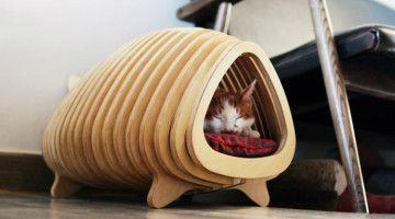 Casa pez para gatos