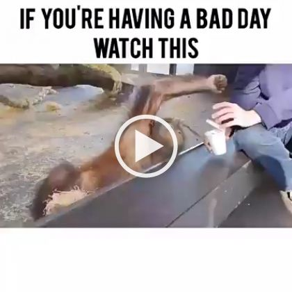 If U Are Having A Bad Day Watch This Bad Day Humor Bad Day Meme Work Jokes