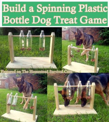 DIY How to Build a Spinning Plastic Bottle Dog Treat Game.  Step by step…