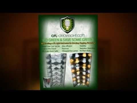 CFL Grow Light ► Awesome HydroPonics ► Inexpensive grow lighting!