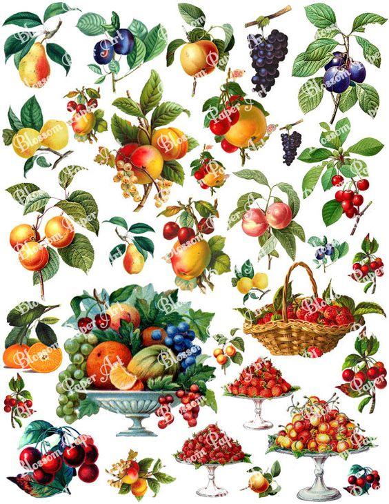 Frutas  Imágenes Vintage para imprimir  1291 por blossompaperart