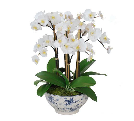 Faux Orchid In Rose Trellis Bowl Orchid Flower Arrangements Rose Trellis Orchids