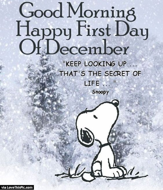 Good Morning Happy First Day Of December: