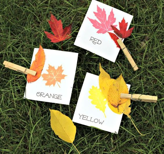 Head outside this Fall for a fun nature & math activity that's perfect for kids of all ages!:
