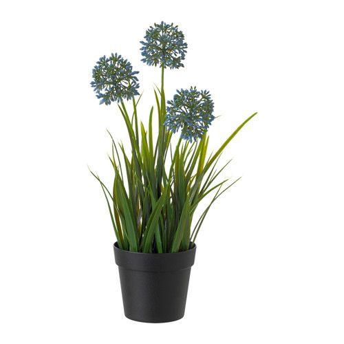 Pinterest le catalogue d 39 id es for Ikea plantes d interieur