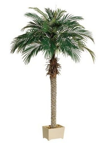 One 68 Inch Artificial Silk Phoenix Palm Tree Potted Plant Palm Tree Plant Potted Trees Fake Palm Tree