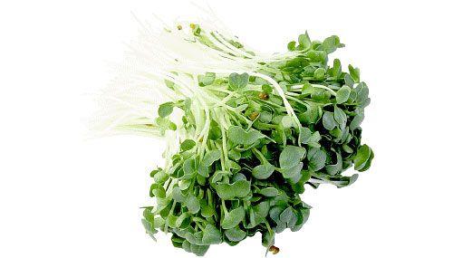 De ce sa consumam vlastari (sprouts)