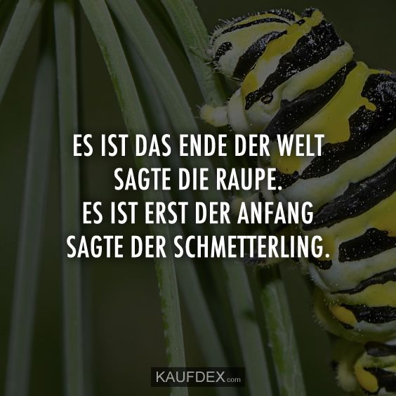 Bleigießen Schmetterling