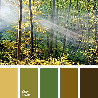 Warm Color Palettes   Page 7 of 43   Color Palette Ideas