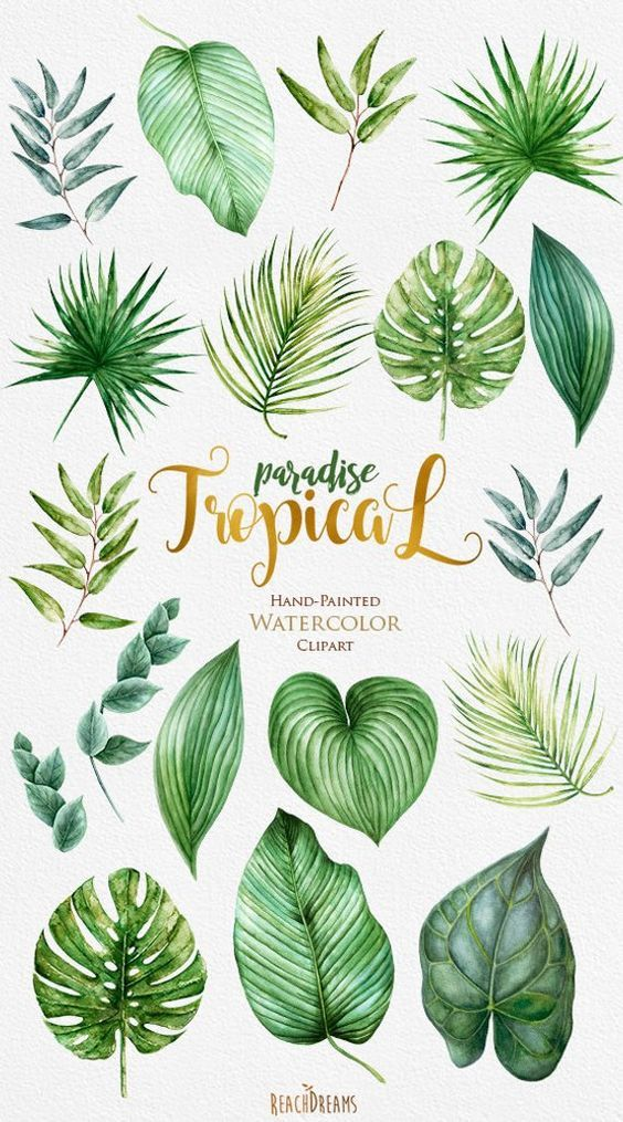 How To Watercolor Flawlessly For Beginners Watercolor Leaves