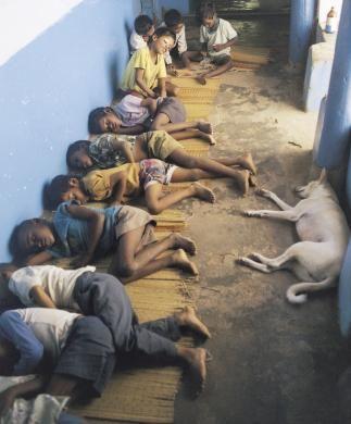 Indian Orphans  .voce acha que tem o direito de reclamar de alguma coisa. Deviamos ter vergonha
