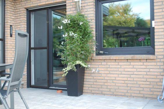 Pflanzkübel Fiberglas in Anthrazit auf Terrasse mit toller Bepflanzung. Weitere Pflanzkübel aus Fiberglas findest du unter https://www.vivanno.de/pflanzkuebel/materialien/fiberglas/