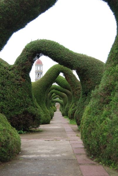 love the lines for sculpture topiary passages